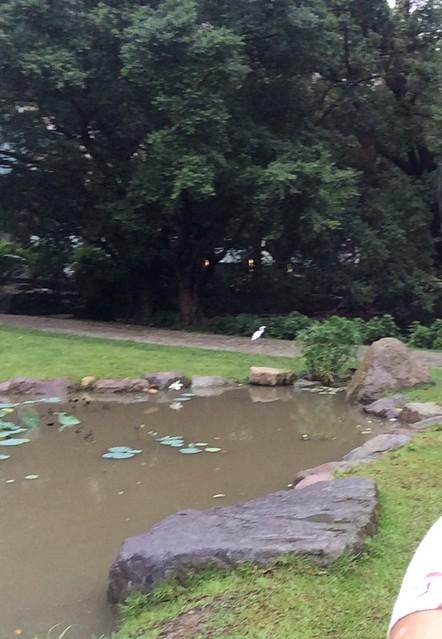 颱風 043