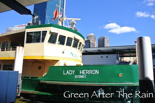 150909c Ferry to Taronga Zoo _014