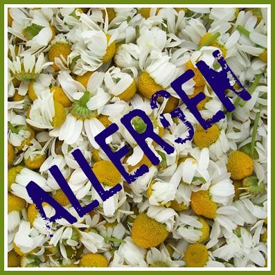 Chamomile-allergen