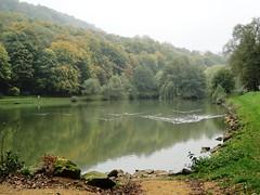 Pond near Rombas