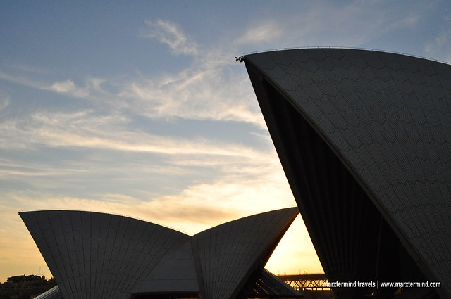 Sydney Opera House Resembles the Shape of the Sails of a Boat
