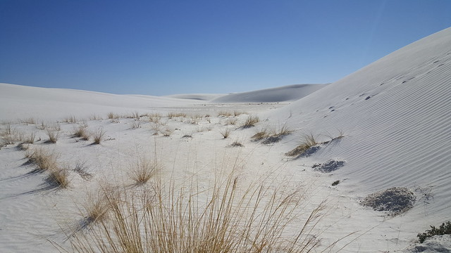 The dune front at White Sands NM