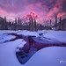 Mount Kidd Reflecting Pools Winter-Horizontal by Chip Phillips