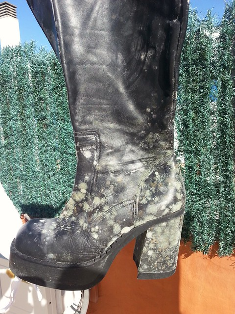 My boots  after weekend working on farmer