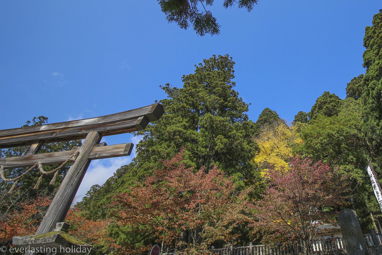 戸隠神社 Togakushi-jinja Shrine-0010
