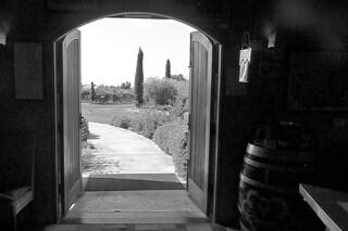 Hagafen Cellars - Wine cellar bw