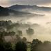 Morning mist over Llandogo by OutdoorMonkey