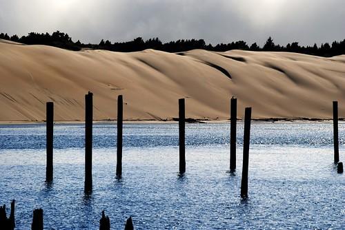 Dunes Near Florence