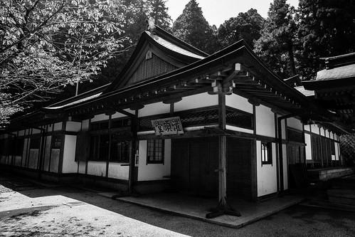 IMG_2884_LR__Kyoto_2015_09_04