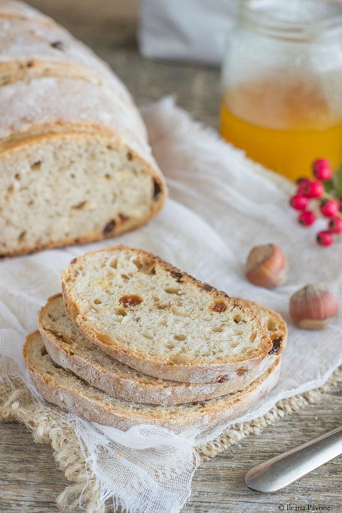 Pane al miele, nocciole e uvetta2