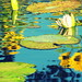 Sunflower reflections in the lily pond by Renee Rendler-Kaplan
