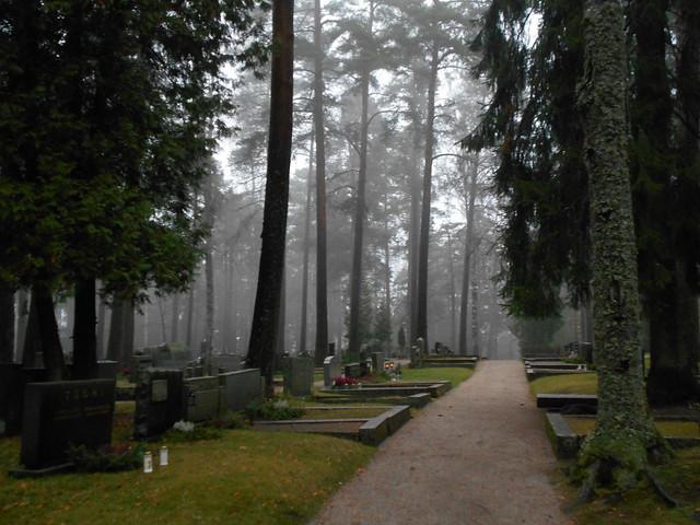 Sumun korostamaa perspektiiviä, 8.11.2015 Hämeenlinna Ahveniston hautausmaa