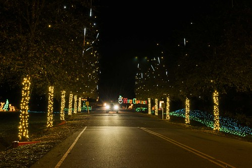 Saluda Shoals - Holiday Lights on the River 2015 | Photos | free ...