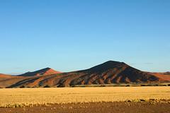 DSC02750 - Namibia 2010 Sossusvlei