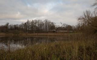 Autumn in Denmark (1)