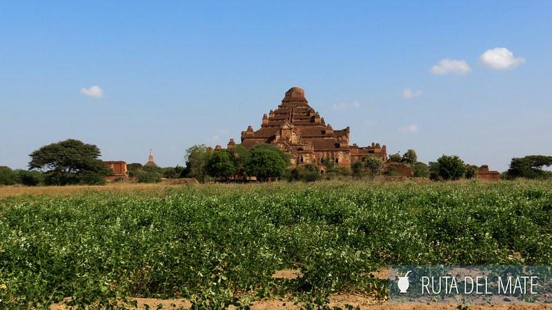 Bagan Myanmar (20)
