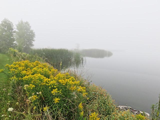 Baileys Harbor shoreline 2-20150905