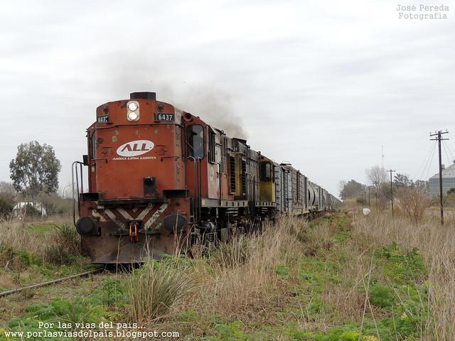 ALCO RSD35 6437 - 6439