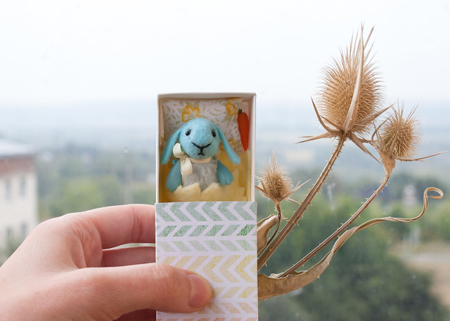 blue rabbit in a matchbox
