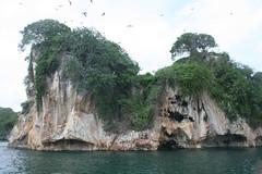 17 - Los Haitises national park / Los Haitises Nationalpark