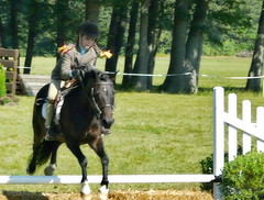 dressage(0.0), trail riding(0.0), animal training(0.0), animal sports(1.0), equestrianism(1.0), english riding(1.0), eventing(1.0), mare(1.0), stallion(1.0), jumping(1.0), show jumping(1.0), hunt seat(1.0), equestrian sport(1.0), sports(1.0), recreation(1.0), outdoor recreation(1.0), equitation(1.0), horse(1.0),