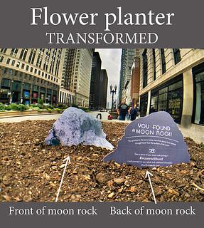Flower planter: transformed