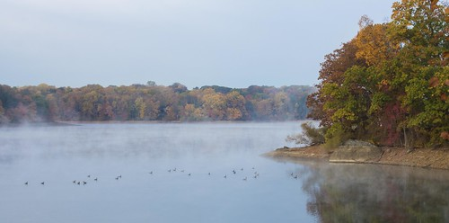 county autumn trees mist lake color fall nature water birds fog october mood reservoir pa delaware newtown geist marple pennsylania delco springton