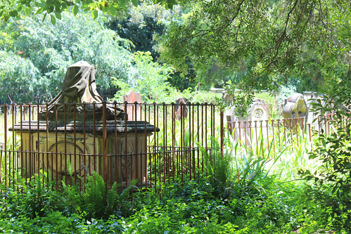 Camperdown Cemetery Tour