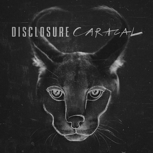 disclosure-caracal-2