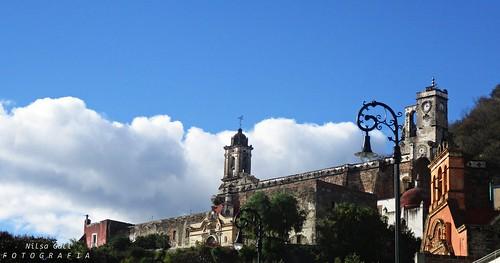 D05 San Andres botanical garden