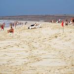 Praia de Carquejinha