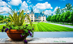 Splendid Landscape