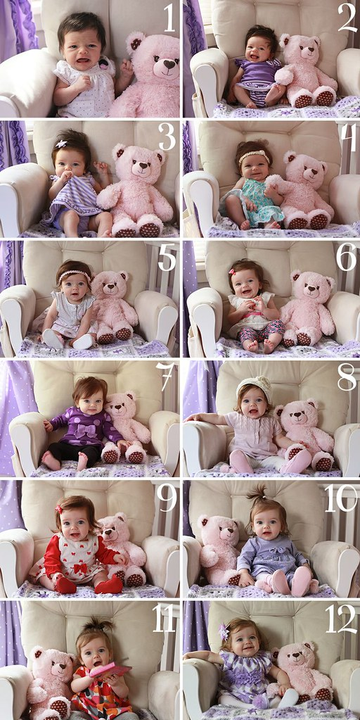 Monthly baby picture ideas to document your baby's growth! A great collection of ideas for taking monthly baby photos!