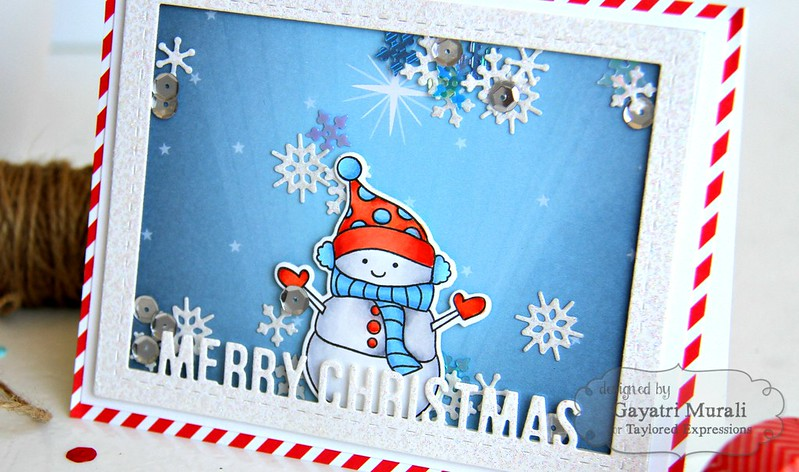 Merry Christmas shaker card closeup1