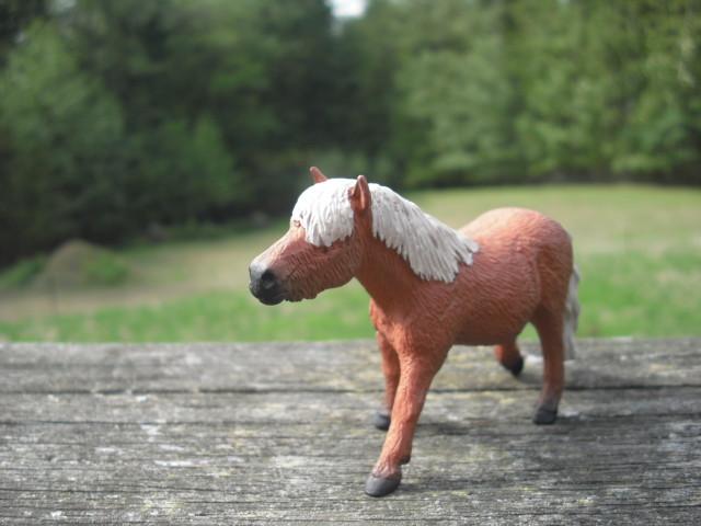 Shetland Pony Mare and Foal 21363971746_a9d7e20b9b_z