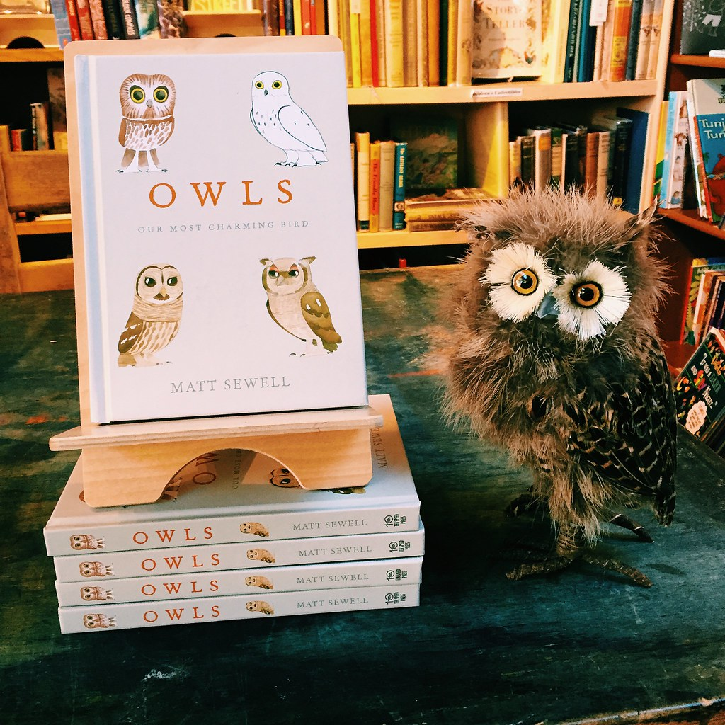 owls. our most charming bird