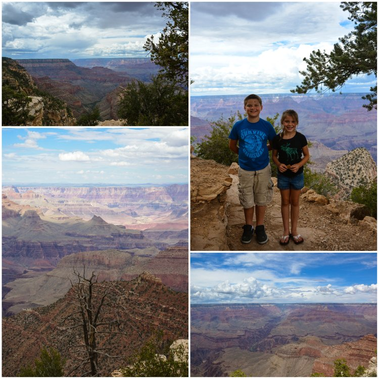 grand canyon six