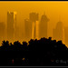Doha skyscaper by jameel riaz