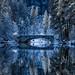Bridge to Narnia by rajaramki