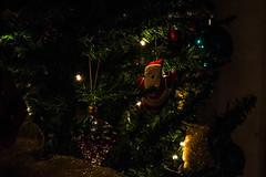 Προετοιμασίες για τις Χριστουγεννιάτικες εκδηλώσεις στη Ψίνθο (2015)