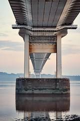 Under the bridge 22/365
