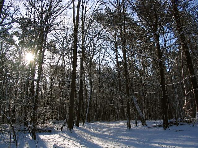 Winterwanderweg, Canon POWERSHOT A70
