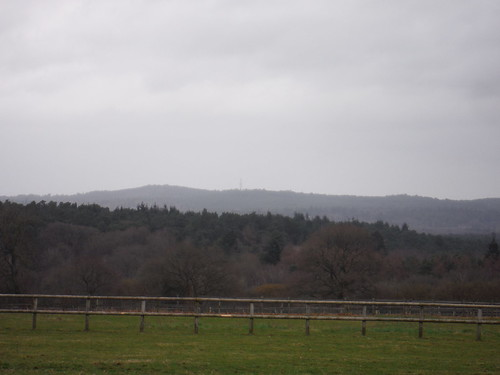 North Downs from near Hedge Farm