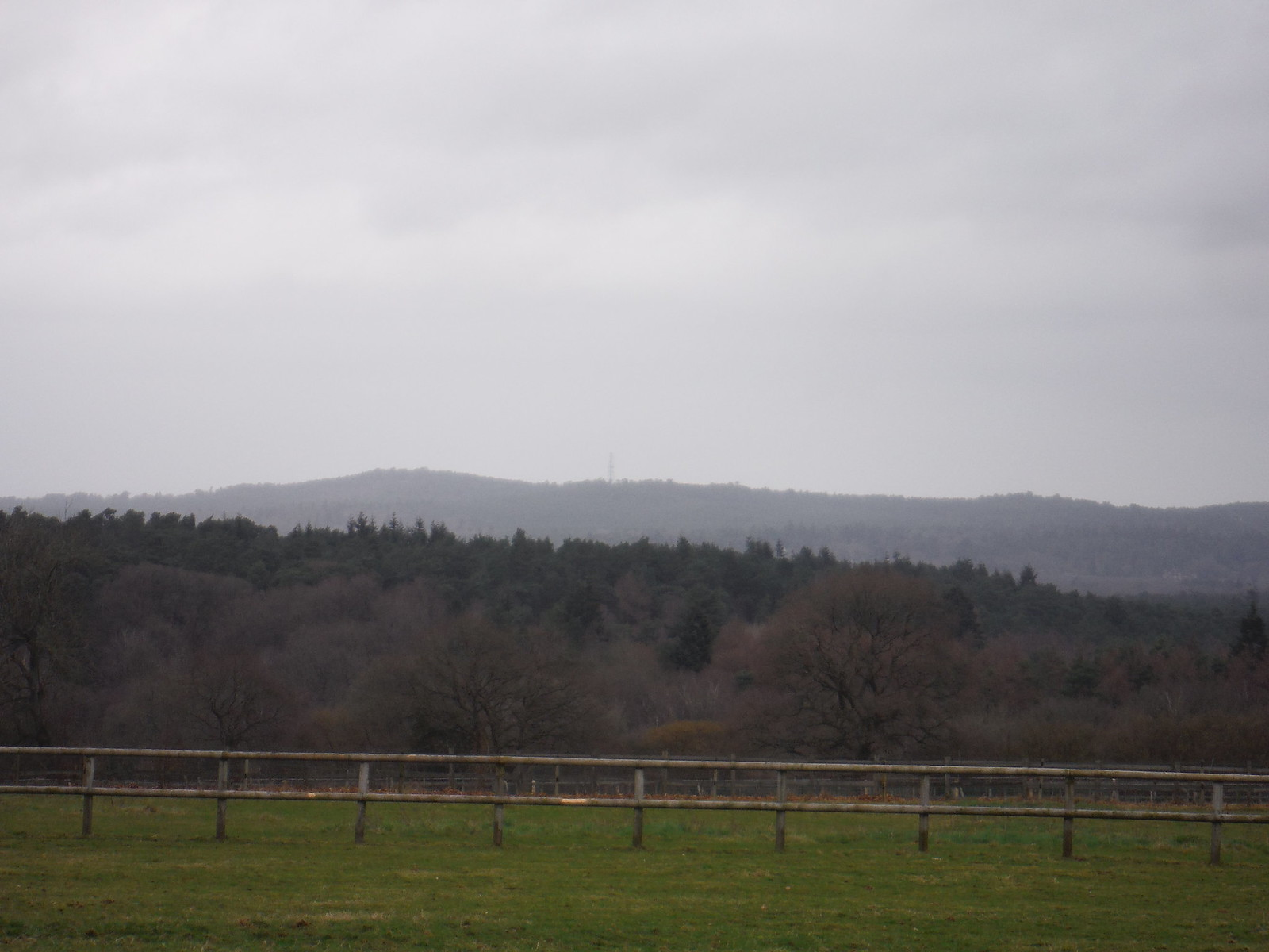 North Downs from near Hedge Farm SWC Walk 144 Haslemere to Farnham