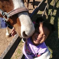 KK & Wendell pose for the camera  #akaleirenee #farmgirl #kkandmamaree #horses #hangingwithmamaree
