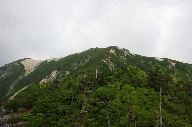 20150809空木岳0131