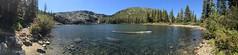 Castle Lake swim