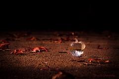 lightpainting reflection 1