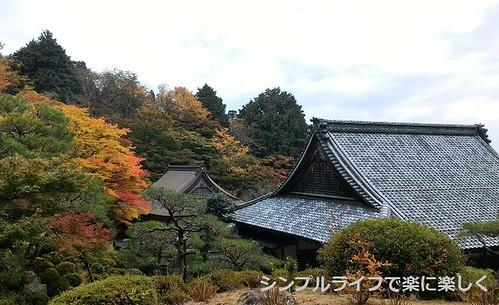 百済寺、展望台より