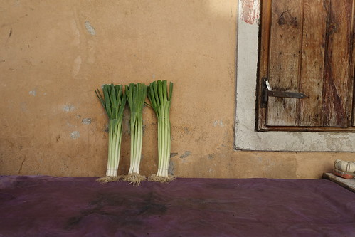 A wall in Shkodra with three leeks